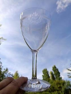 Saint Louis Manon 12 Weingläser Weinrömer 12 Verre A Vin Cristal Gravé Kristall